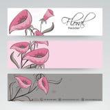 Floral website header or banner design. Royalty Free Stock Photo