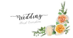 Floral Wedding Invitation, Thank You - card template trendy Design watercolor Sweet Juliet Roses