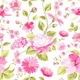 Floral wedding pattern Stock Photos