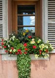 Floral window scene with wooden shutters and reflections Stock Photo