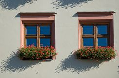 Floral Windows Royalty Free Stock Photos