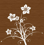 Floral on wood. Vector. Royalty Free Stock Photos