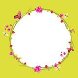 Floral wreath with butterflies and dragonflies on a green background royalty free stock images