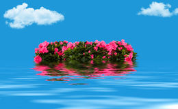 Floral wreath floating on the water Stock Photography