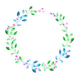 Floral wreath.Garland with berry and herb . Stock Images