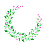 Floral wreath.Garland with berry and herb . Watercolor hand drawn illustration.White background.It can be used for greeting cards, posters, wedding cards Stock Image