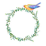 Floral wreath.Garland of a eucalyptus branches and bird. Royalty Free Stock Images