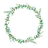Floral wreath.Garland of a eucalyptus branches.Frame of a herbs. Royalty Free Stock Photo