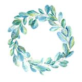 Floral wreath.Garland with eucalyptus branches. stock illustration
