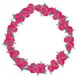 Floral wreath made of peonies Stock Photos
