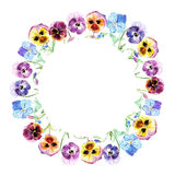 Floral wreath.Pansy flowers. Royalty Free Stock Images