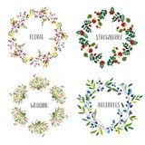 Floral wreath set with different flowers and berries for the cards, wedding or holiday. Vector illustration vector illustration