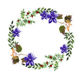Floral wreath Stock Photography