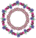 Floral wreaths Royalty Free Stock Photography