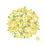 Floral yellow bouquet for your design Royalty Free Stock Photo