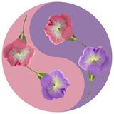 Floral Yin Yang symbol. Geometric Yin Yang symbol drawing made by plants on colored background in oriental style. Yin Yang symbol from pressed flowers, petals Royalty Free Stock Photography