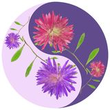 Floral Yin Yang symbol. Geometric Yin Yang symbol drawing made by plants on colored background in oriental style. Yin Yang symbol from pressed flowers, petals Stock Photography