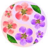 Floral Yin Yang symbol. Geometric Yin Yang symbol drawing made by plants on colored background in oriental style. Yin Yang symbol from pressed flowers, petals Stock Image