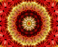 Floral Yoga mandala Stock Images