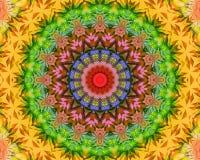 Floral Yoga mandala Royalty Free Stock Images