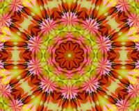 Floral Yoga mandala Stock Images