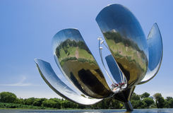 Floralis Generica stock photos