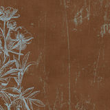 сбор винограда ботанических florals предпосылки бумажный Стоковое Фото
