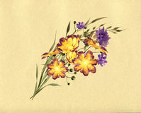 Florals design Royalty Free Stock Image