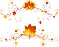 Florals di autunno Immagine Stock