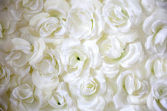Florals ornament. Beautiful white florals ornament background Stock Photography