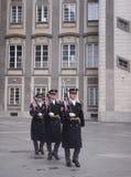 florapatroon op Doek Royalty-vrije Stock Fotografie