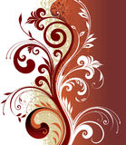 Florar pattern for design Royalty Free Stock Images