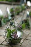 Florarium with fresh succulent flowers. Event fresh flowers decoration. Florist workflow. Wedding banquet design royalty free stock photo