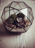 Florarium. Handmade glass florarium, home deign Royalty Free Stock Image