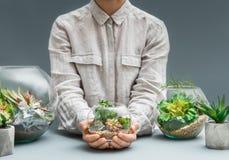 Florariums décoratifs Plan rapproché de jardinage à la maison de concept de passe-temps images stock
