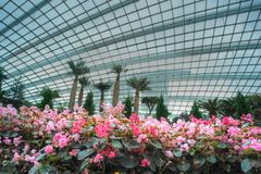 Florascape, Flower Dome, Gardens by the Bay Royalty Free Stock Image