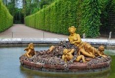 Floraspringbrunn i den Versailles slottträdgården, Frankrike Arkivfoton