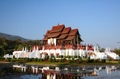 Flore royale, Chiang Mai Photographie stock libre de droits