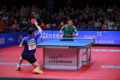 FLORE Tristan topspin. FLORE Tristan from France topspin at the 2017 European Championships -1/2 Final stock image