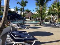 Flore verte de végétation d'hôtel de voyage d'hôtel de la paume trois de la République Dominicaine  image stock