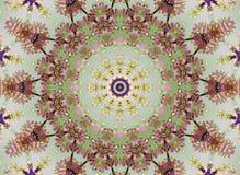 Floreale astratto Fotografie Stock
