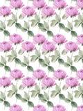 Floreale decorativo variopinto delle rose del fondo senza cuciture inglese lilla del giardino Immagine Stock Libera da Diritti