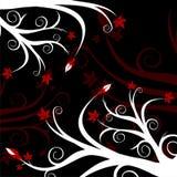 Floreale rosso & nero Fotografie Stock