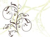 Floreale variopinto astratto Fotografia Stock Libera da Diritti
