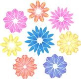 Floreale variopinto dei fiori geometrici artistici di vettore illustrazione di stock