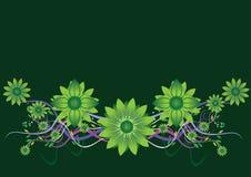Floreale verde Fotografie Stock Libere da Diritti