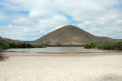 Floreana island landscape. Royalty Free Stock Photos