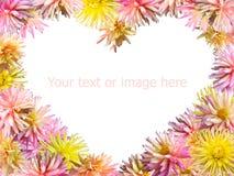 Florece el corazón Foto de archivo libre de regalías