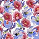 Florece el ejemplo de la acuarela Composición floral Mime al día del ` s, boda, cumpleaños, Pascua, día del ` s de la tarjeta del fotografía de archivo