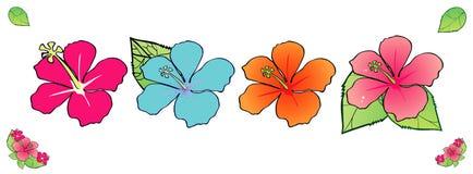 Florece el hibisco con la hoja, ejemplo del vector Foto de archivo